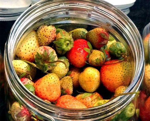 Gruene Erdbeeren im Einmachglas im Sterne-Restaurant Meyers Keller