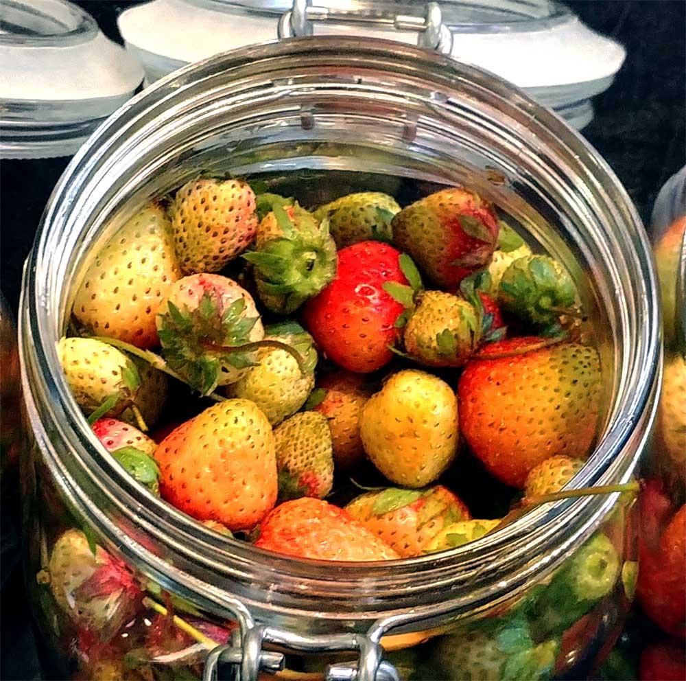 Wir kochen gerade mit den letzten eingelegten grünen Erdbeeren
